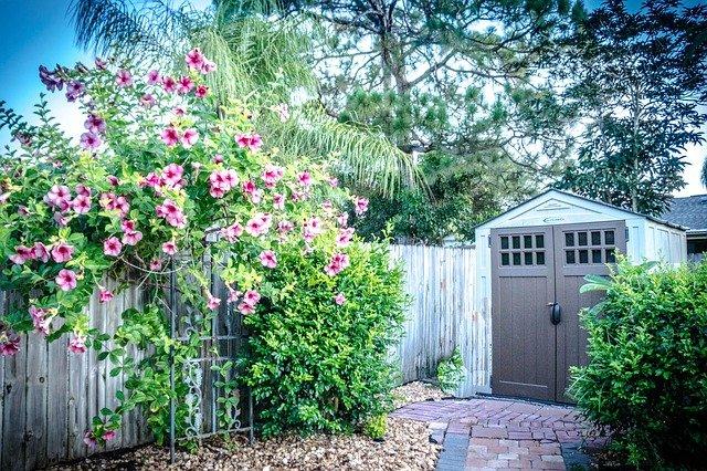 איך לבחור מחסן גינה לחצר?
